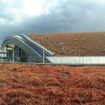 Sedum Roof Installation in Allathasdal 11