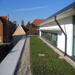 Green  Roofs in Cambridgeshire 5