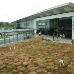 Green  Roofs in Adeney 8