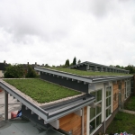 Green  Roofs in Ash Vale 2
