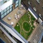 Sedum Roof Installation in Armshead 12