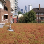 Green  Roofs in Cambridgeshire 12