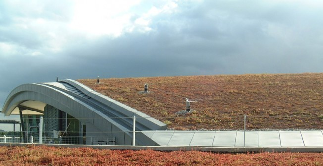 Biodiverse Roof Installers in Powys
