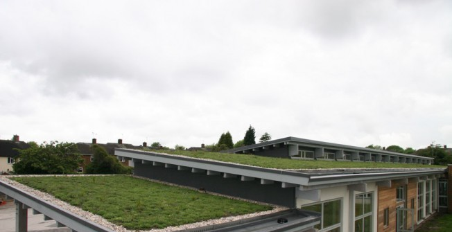 Living Roof Construction in Adeney