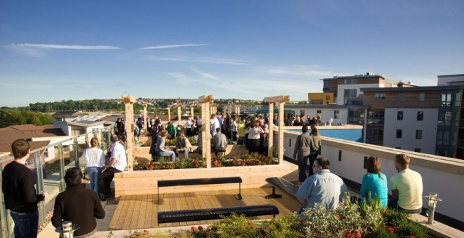 Landscape Rooftop Garden in Ballymoney